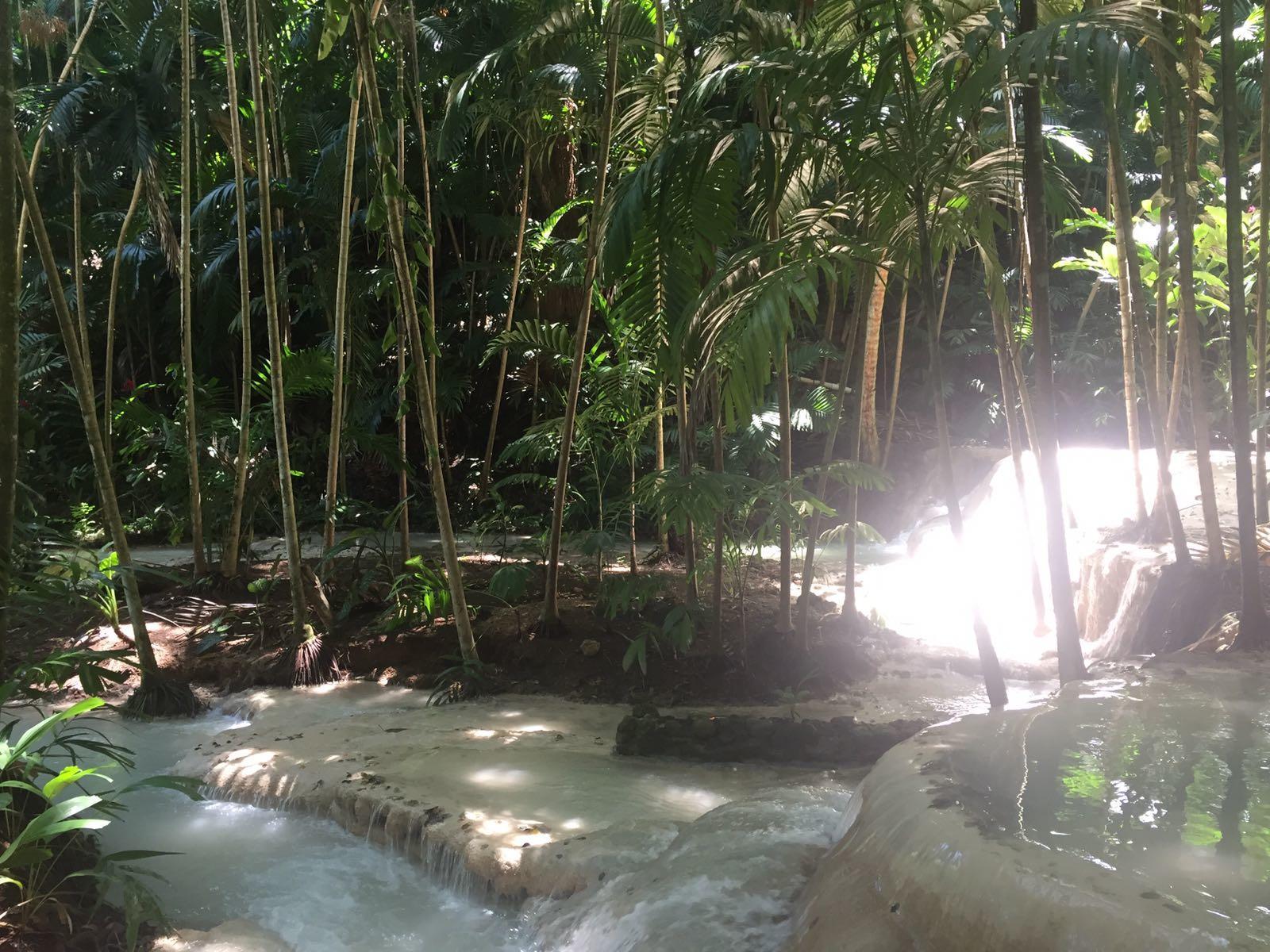Enchanted Garden: Turtle River Falls & Garden (Enchanted Gardens) In Ocho